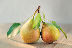 Paired fruit - two pears on one stalk with leaves. With drops of water, lit by the sun on a wooden background. Toned image Royalty Free Stock Image