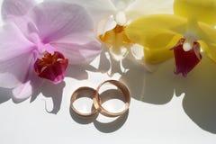 Paires d'anneaux de mariage élégants Image libre de droits