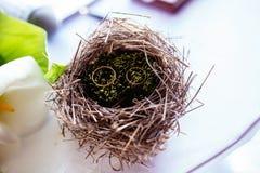 Paires d'anneaux de mariage s'étendant dans la décoration de mariage de nid Symbole de famille, d'unité et d'amour Photographie stock libre de droits