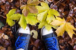 Paires d'espadrilles noires dans des feuilles d'automne brunes et jaunes Photos libres de droits