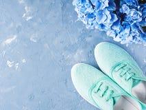 Paires d'espadrilles vertes de toile de femme sur le fond bleu Image stock
