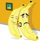 Paires de bananes Photographie stock