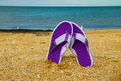 Paires de bascules électroniques collant sur une plage arénacée de mer Photo libre de droits