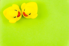Paires de canards en caoutchouc jaunes au-dessus de fond vert coloré Photo stock