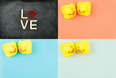 Paires de canards en caoutchouc jaunes d'isolement au-dessus du fond coloré, concept d'amour Photographie stock