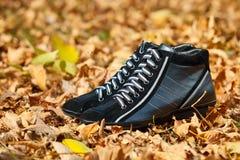 Paires de chaussures femelles noires dans le feuillage d'automne Photos stock