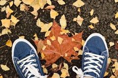 Paires de fond de chaussures de toile bleues avec les feuilles d'automne tombées Photographie stock libre de droits