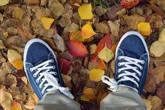 Paires de fond de chaussures de toile bleues avec les feuilles d'automne tombées Photo libre de droits