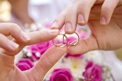 Paires de mains avec des anneaux de mariage Photo libre de droits