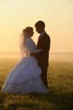 Paires de mariage Photo libre de droits