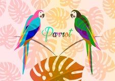 Paires de modèle floral multi de perroquets, de coloration de perroquet d'oiseau d'icône d'image de conception tropicale d'illust illustration stock