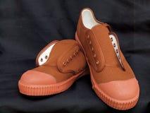 Paires de nouvelles chaussures de toile Photos libres de droits