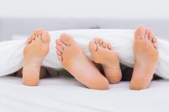 Paires de pieds sous les couvertures Photo stock