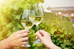 Paires de verres à vin Images stock