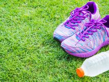Paires des chaussures et de la bouteille d'eau roses de sport sur le champ d'herbe verte Photo libre de droits
