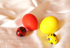 Pairs from different eggs Royalty Free Stock Photography