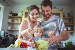 Pais que olham sua filha misturar a salada imagem de stock royalty free