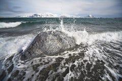 Paisagem ártica do fjord Foto de Stock