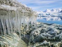 Paisagem ártica - geleiras e montanhas - Spitsbergen Imagens de Stock