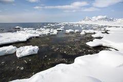 Paisagem ártica, gelo na costa Foto de Stock