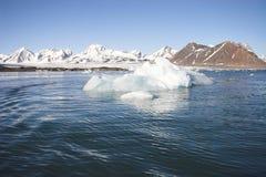 Paisagem ártica (Spitsbergen) Imagens de Stock