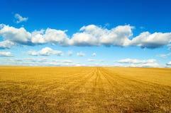 A paisagem. Fotografia de Stock Royalty Free