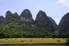 Paisagem 2 do rio de Li Fotografia de Stock Royalty Free