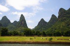 Paisagem 3 do rio de Li Foto de Stock