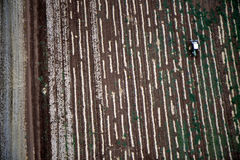 Paisagem aérea com campo rural Imagem de Stock
