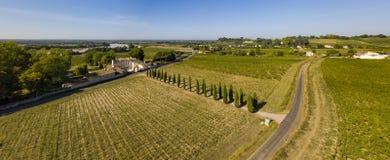 Paisagem aérea do vinhedo de Fronsac do wiev, vinhedo sul a oeste de França imagem de stock