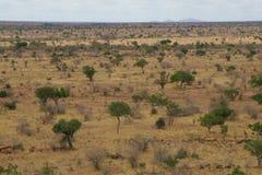 Paisagem africana Fotos de Stock
