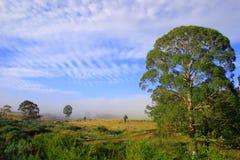 Paisagem africana da exploração agrícola. foto de stock