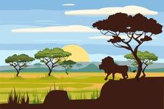 Paisagem africana, leão, savana, por do sol, vetor, ilustração, estilo dos desenhos animados, isolado Fotos de Stock Royalty Free