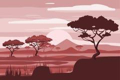 Paisagem africana, leão, savana, por do sol, vetor, ilustração, estilo dos desenhos animados, isolado Foto de Stock Royalty Free