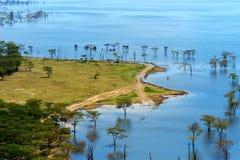 Paisagem africana, vista aérea no lago Nakuru imagem de stock