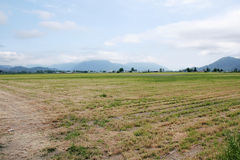 Paisagem agrícola rural do vale Foto de Stock Royalty Free