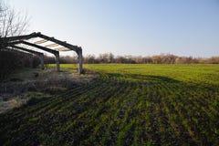 Paisagem agr?cola do campo Carcaça abandonada da estufa no campo da colheita da mola com céu azul fotos de stock