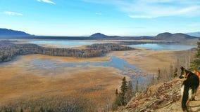 Paisagem, Alaska Foto de Stock