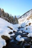 Paisagem alpina Foto de Stock