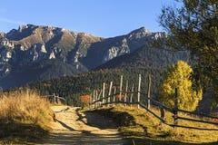 Paisagem alpina do outono colorido impressionante com campos e as montanhas altas verdes, farelo, a Transilvânia, Romênia Fotos de Stock
