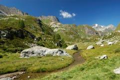 Paisagem alpina do verão Fotos de Stock