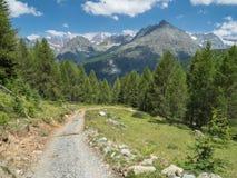 Paisagem alpina do verão com a estrada secundária em Val Malenco imagem de stock