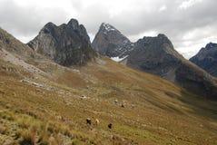 Paisagem alpina em Cordiliera Huayhuash fotografia de stock