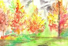Paisagem amarela vermelha da madeira da floresta do outono da aquarela Foto de Stock Royalty Free