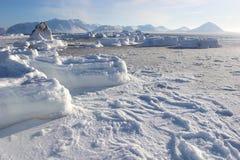 Paisagem antárctica do inverno Imagem de Stock