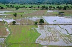 Paisagem arquivada arroz vista de cima de; kanchanaburi Tailândia Fotografia de Stock Royalty Free