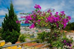 Paisagem As montanhas e os montes verão Vietname, Dalat Foto de Stock Royalty Free