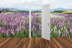 Paisagem atrás da porta de abertura, 3D Fotografia de Stock