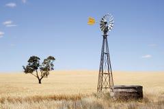 Paisagem australiana Fotografia de Stock