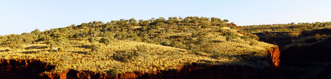 Paisagem australiana panorâmico - desfiladeiro do parque nacional de Karinji, W Imagem de Stock Royalty Free